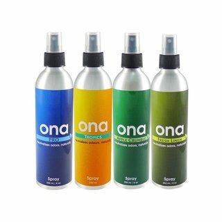 ONA Spray 250ml Fruit Fusion